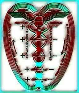 El Caduceo, uno de los simbolos identificativos de la Terapia de Polaridad, Terapia Natural No Sanitaria desarrollada por el Dr Austríaco Randolph Stone
