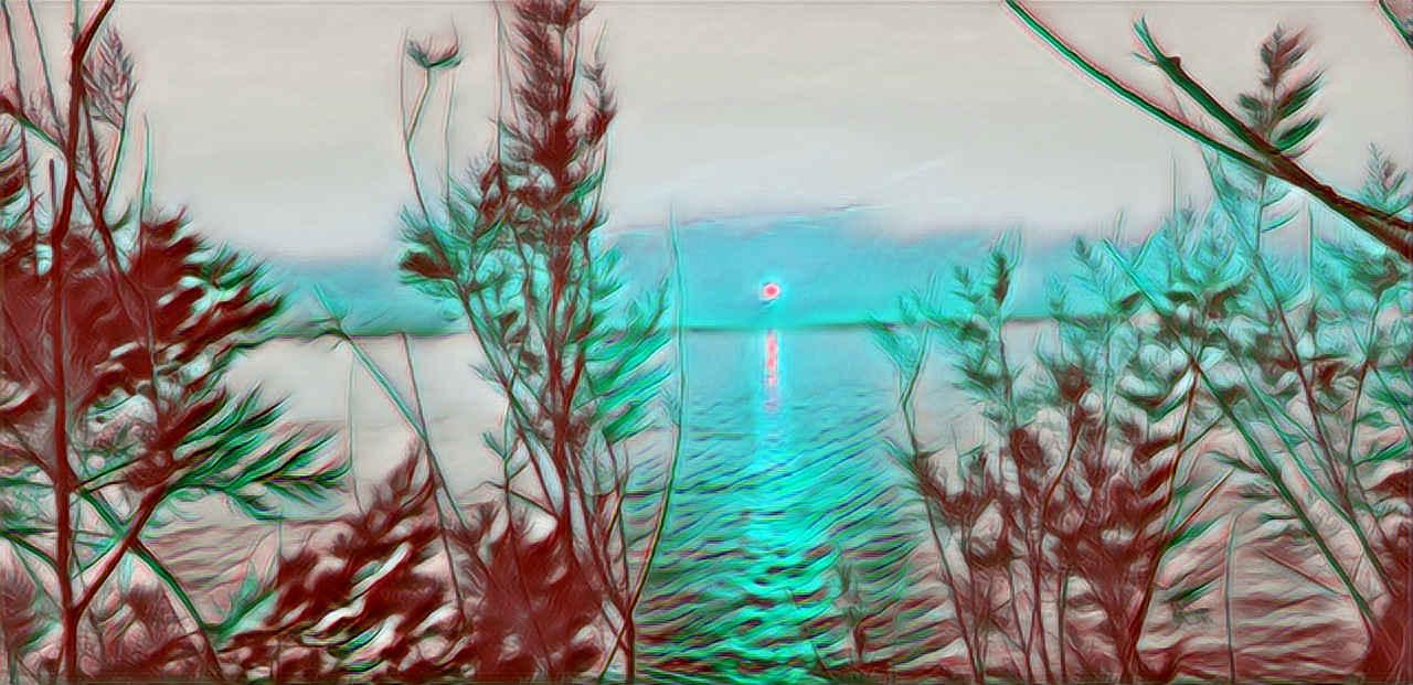 Imagen con mar de fondo y vegetacion en primer plano haciendo referencia a las vacaciones como manera de reconectar con el Cuerpo a través de la Naturaleza y la Desconexion con las tecnologías, el trabajo y el estrés del día a día en general