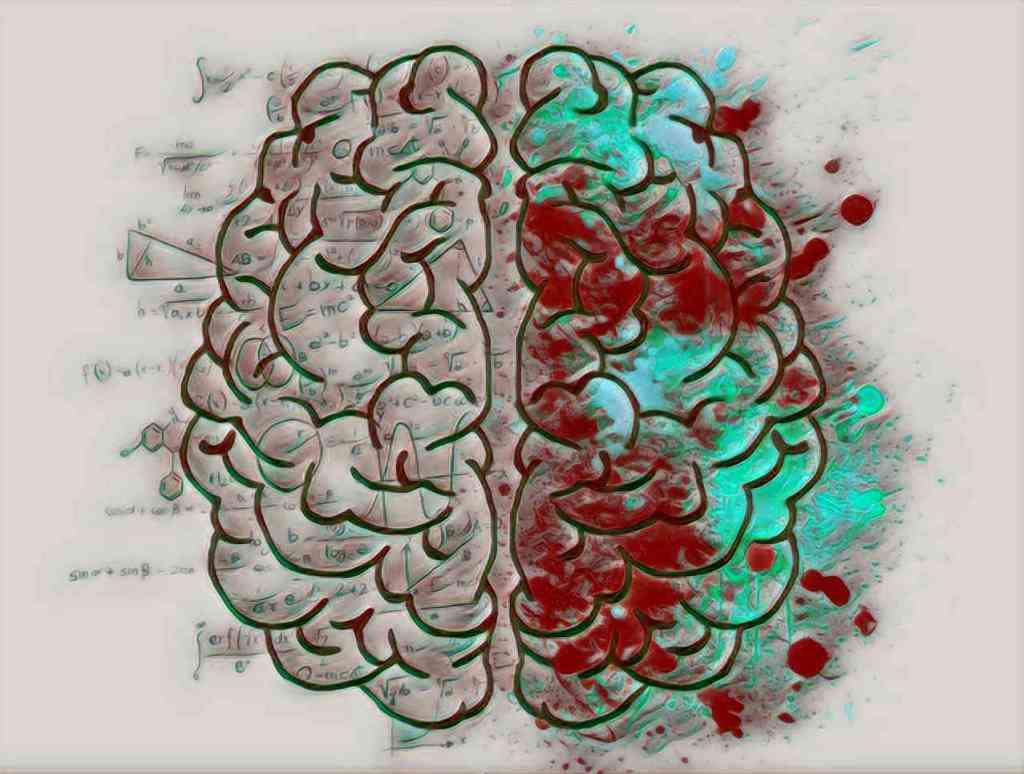 El hemisferio izquierdo se corresponde con la parte lógica del cerebro y el hemisferio derecho con la creativa