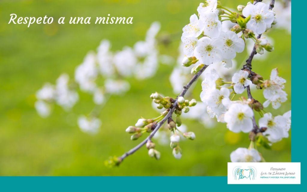 flores blancas como representación del respeto a una misma
